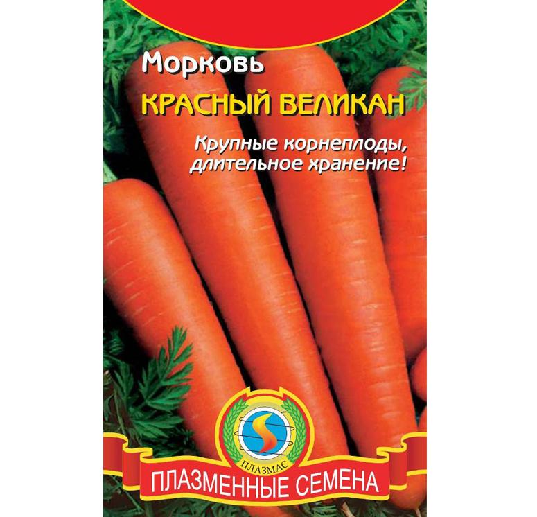 Самые лежкие сорта моркови